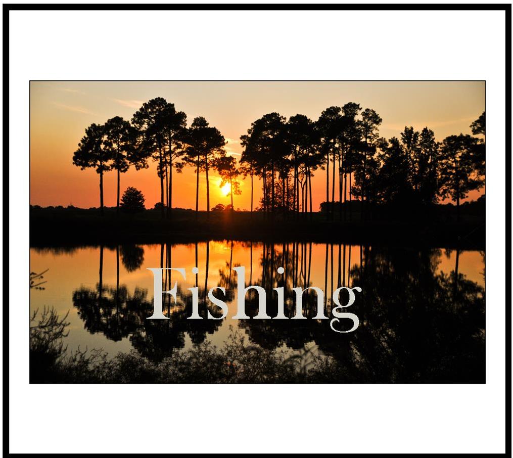 fishing web